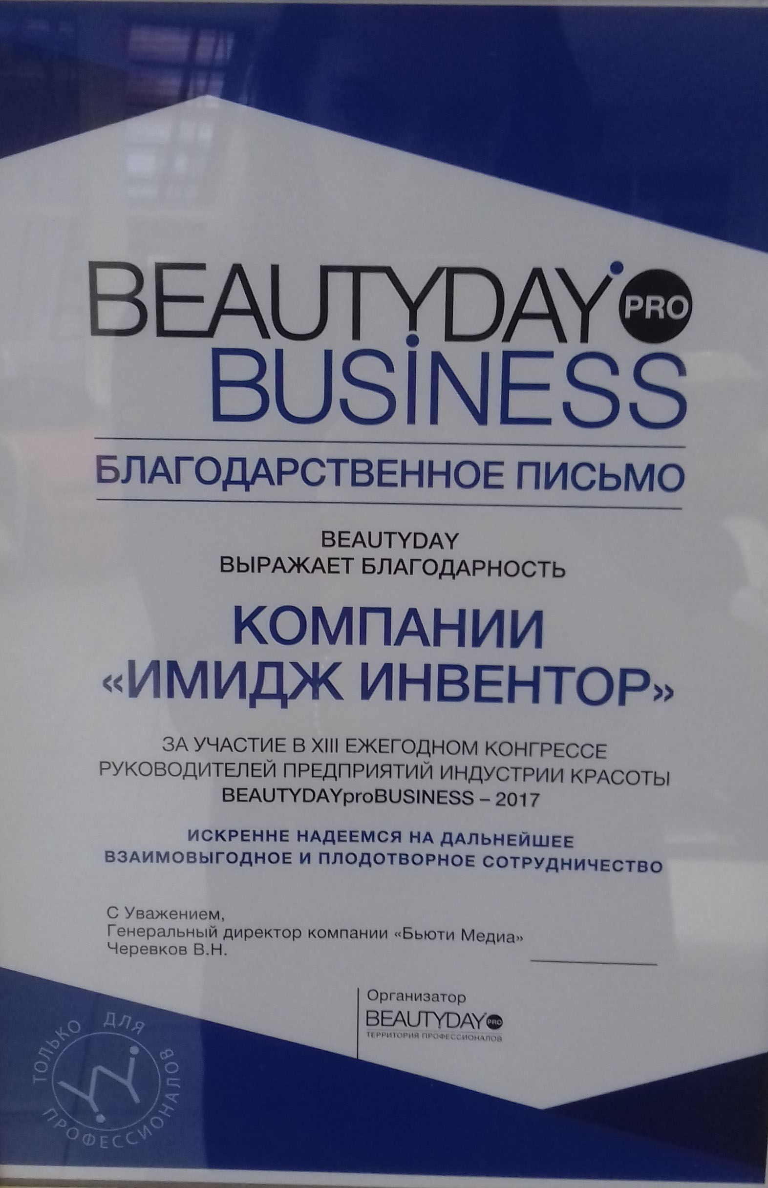 BEAUTYDAYproBUSINESS-2017